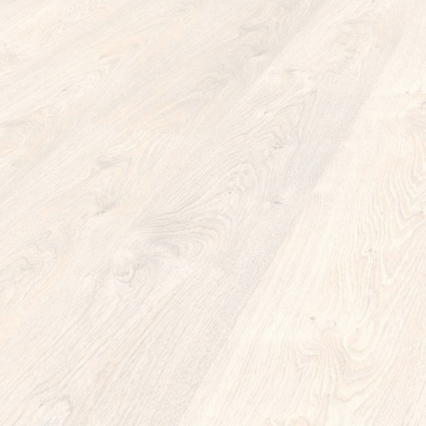8373 - Rovere Iceberg